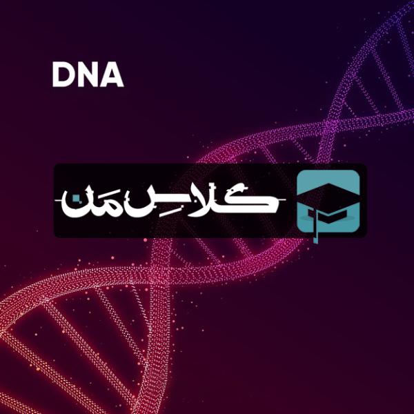 آموزش زیست شناسی فصل هفتم دوازدهم | زيست فناوري و مهندسي ژنتيك دوازدهم(قسمت چهارم)