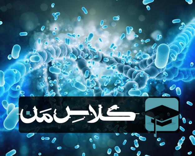 جزوه باکتری شناسی جاوتز | خلاصه باکتری شناسی جاوتز |اموزش باکتری شناسی